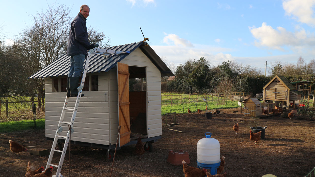david-attaching-roof-sheets-to-shed